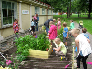 Rohelised reeded Miiamilla miniaias!